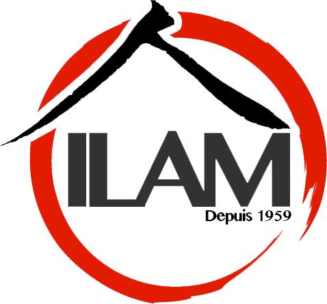ILAM - Institut Lillois des Arts Martiaux - Lille